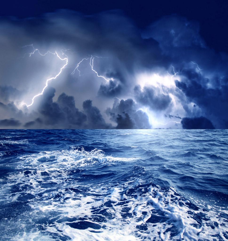 組織改革は嵐
