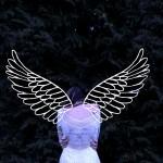 羽が生えた怖い少女